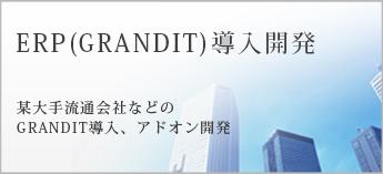 ERP(GRANDIT)導入開発